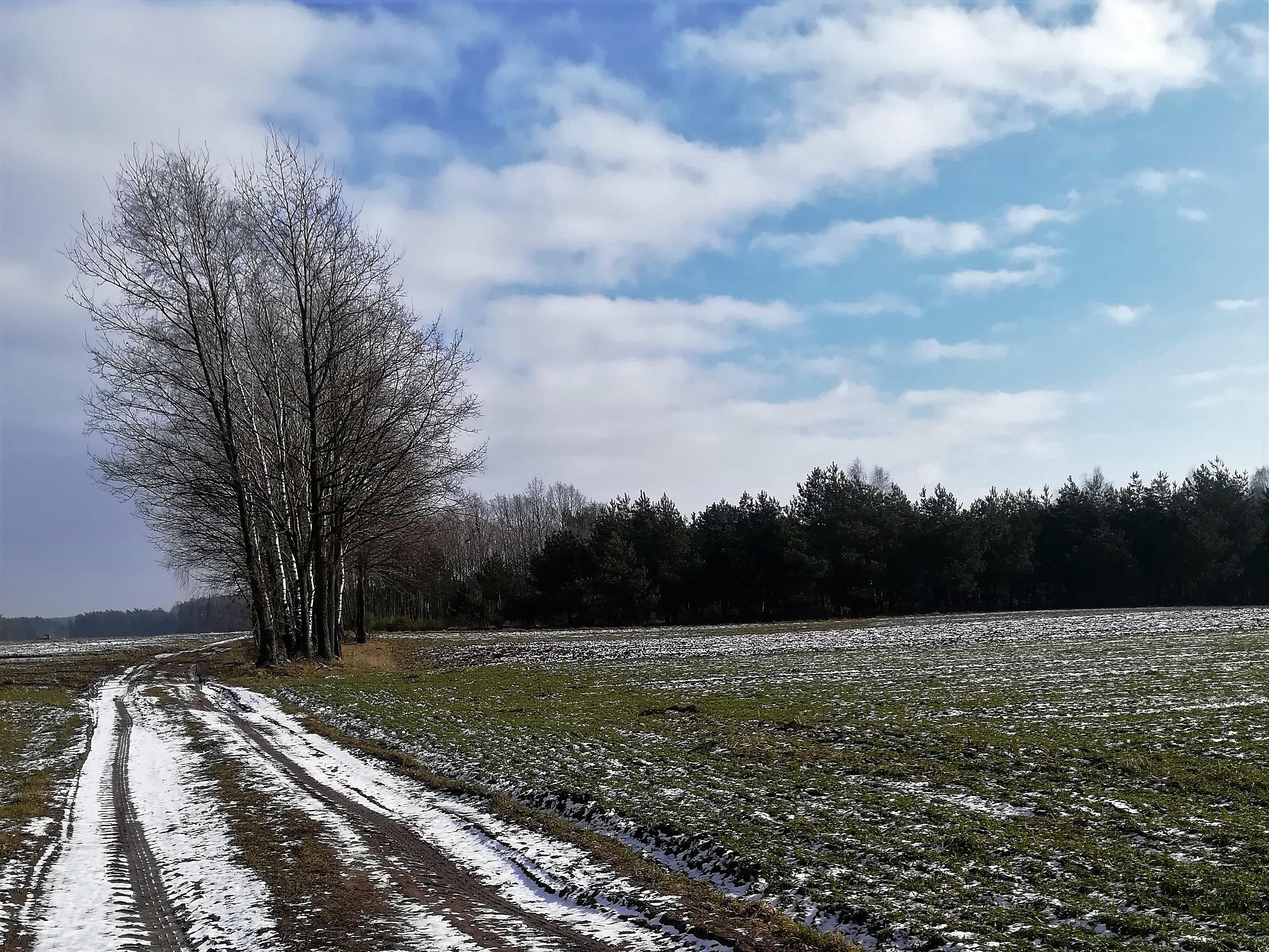 Zima – przemiana Wody, noc, starość, odpoczynek..
