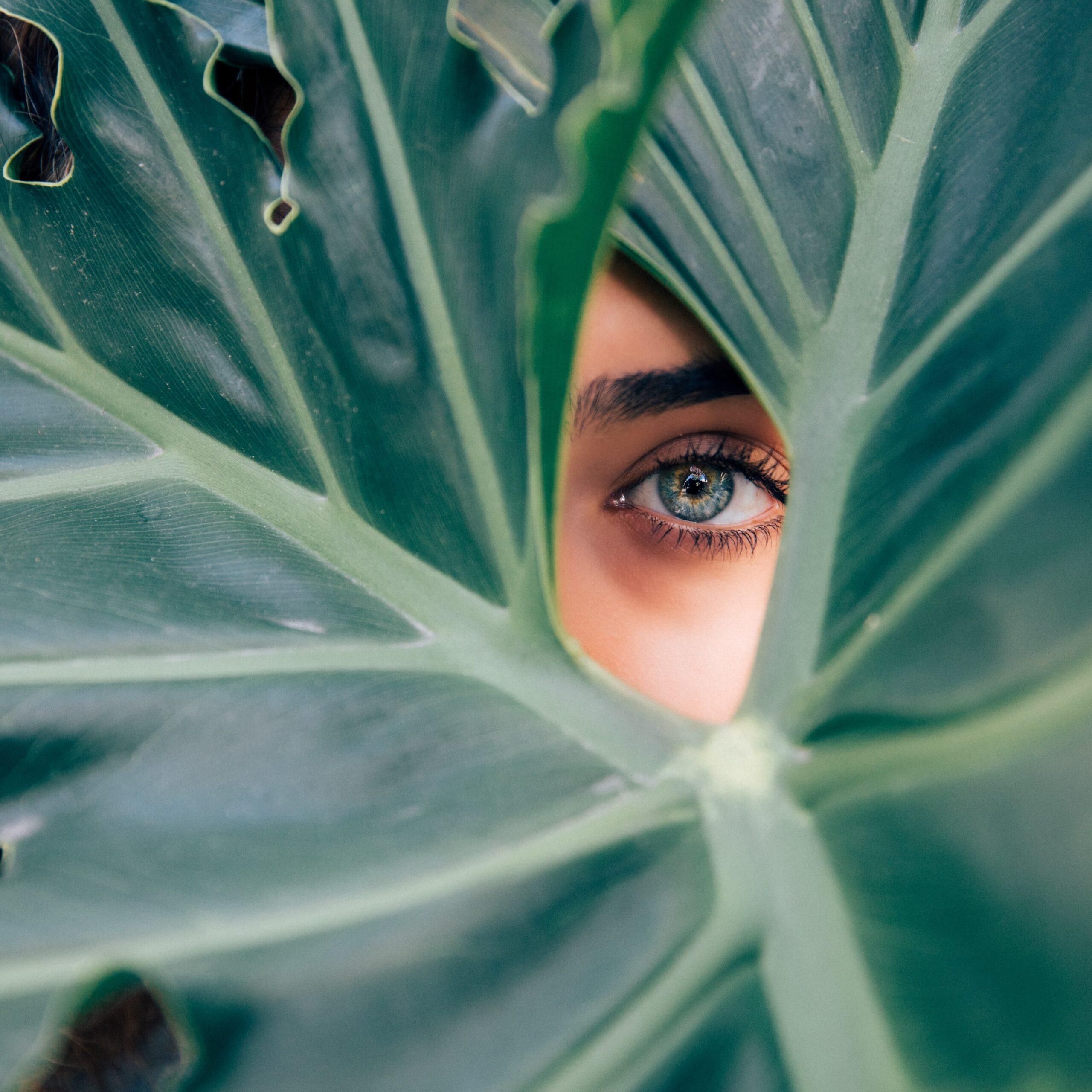 Odkrywanie tajemnic – terapia poliwagalna