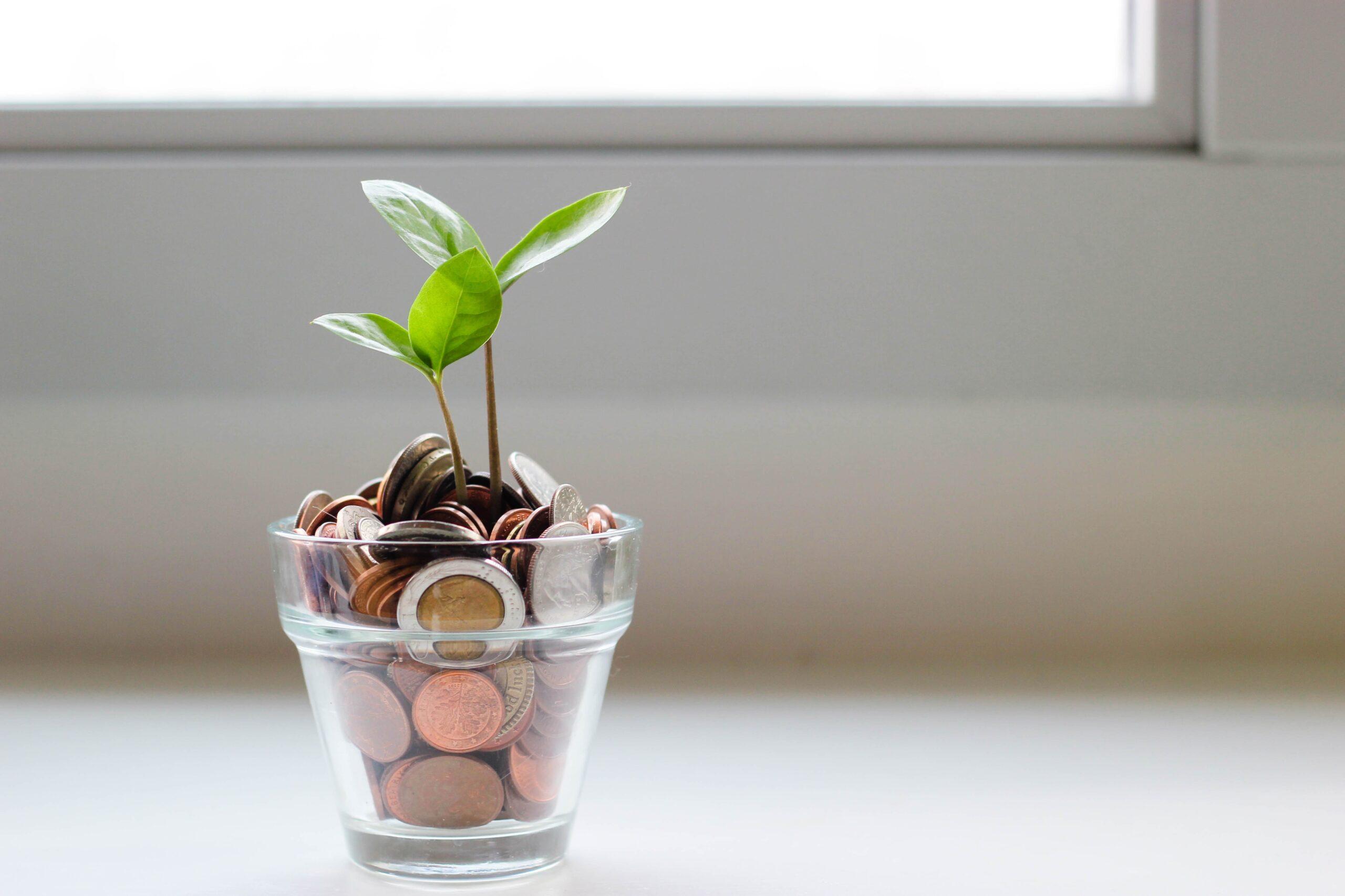 Przyjemność-praca-pieniądze – uzdrowienie relacji z pieniędzmi – 19-21 listopada